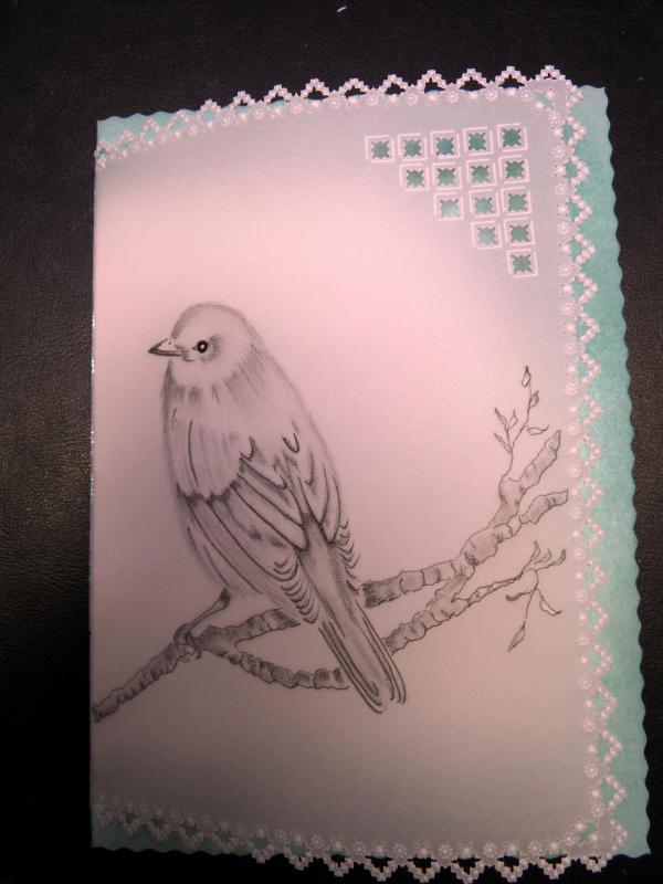Carte oiseaux 005