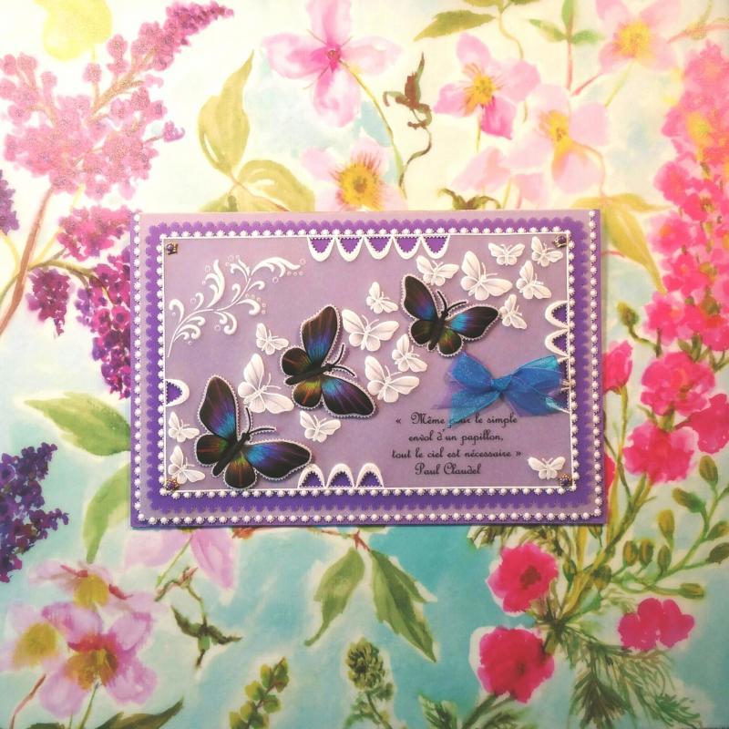 Carte papillon 003